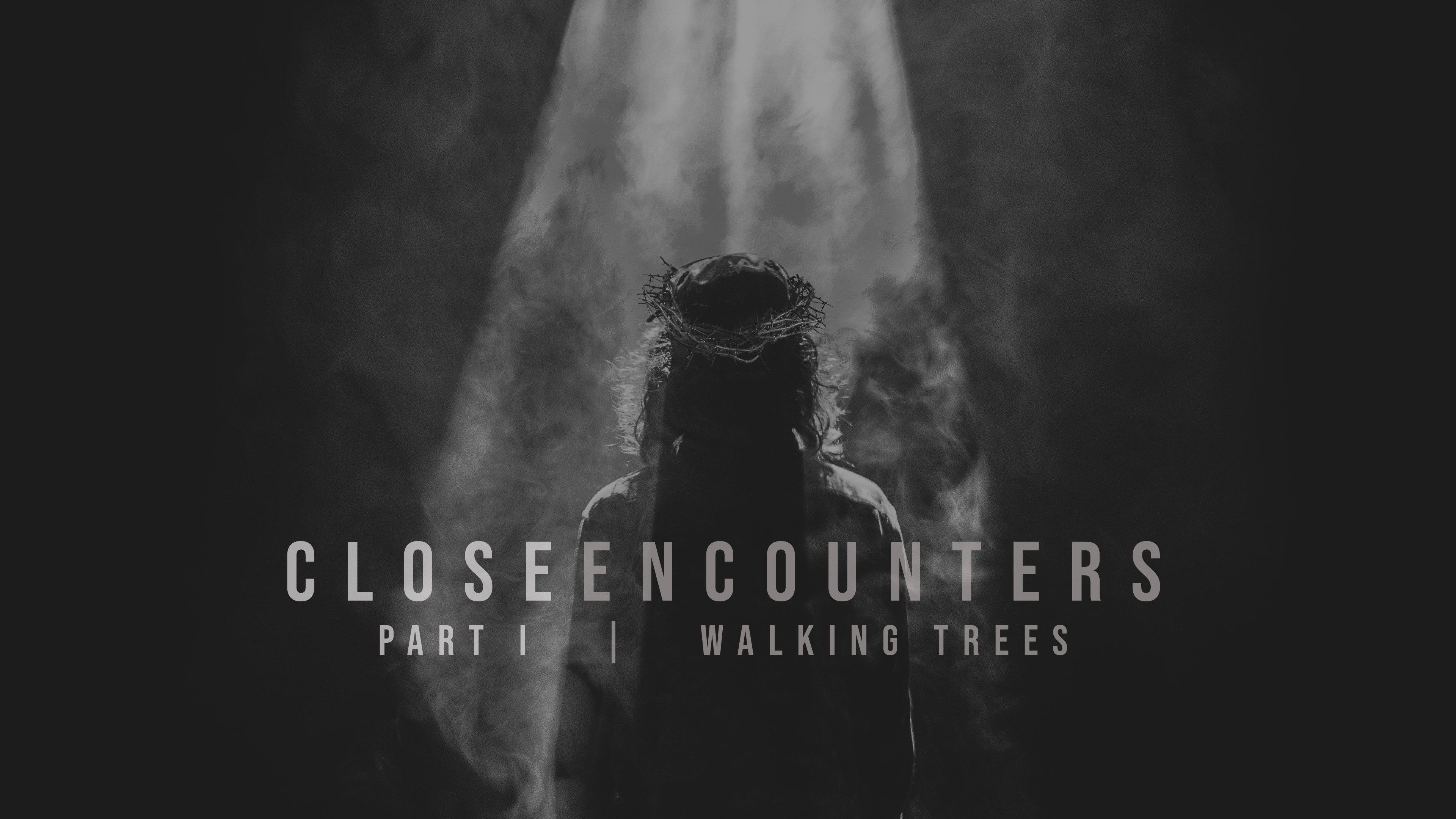Close Encounters Part I  |  Walking Trees